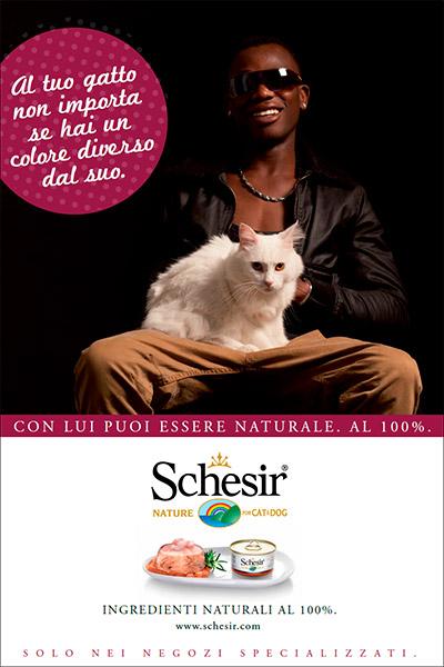 schesir_01